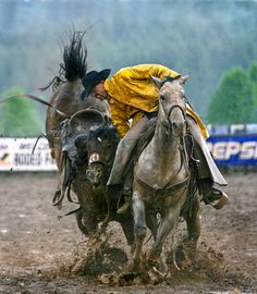 In a rain-soaked arena, a pickup man attempts to grab the bronc rein to take control of the horse - Saddle Bronc Riding. - photo by Bev Pettit Photography Rodeo Cowboys, Real Cowboys, Cowboy Horse, Cowboy And Cowgirl, Cowgirls, Rodeo Events, Rodeo Life, Into The West, Charro
