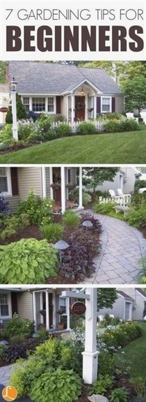 visit www.livingrichwithcoupons.com for more information on Gardening Tips for Beginners and Frugal Ways to Make Your Garden Beautiful  #LandscapingIdeas