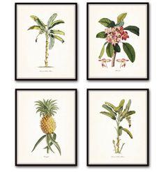 Vintage Botanical Pr