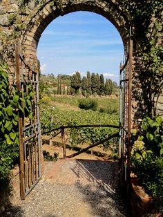 Gate to vineyard in Tuscan villa