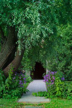 Secret Garden° ♡¸. Portal, Jm Barrie, Busch Gardens Tampa, All Nature, My Secret Garden, Parcs, Gardening, Garden Gates, Dream Garden