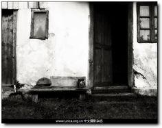 """Andrei Baciu """"Granny's Place"""""""