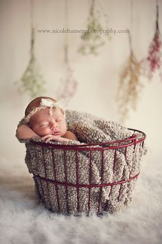 1 Month Old Baby, 1 Month Olds, Maternity Photography, New Day, Baby Photos, Bassinet, Special Events, Children, Awesome