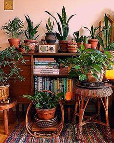 Boho Plant Decor -   - #Boho #decor #decorationappartement #liontattoo #plant #roomdecoration #tattoogirlmodels