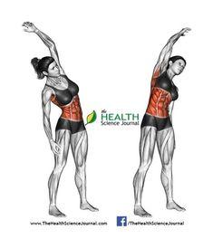 © Sasham | Dreamstime.com - Fitness exercising. Slopes towards. Female