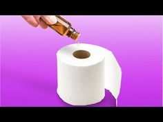 SMART AND CREATIVE HOUSEHOLD HACKS Everybody needs household hacks to make things a lot easier for your daily routine. Check out unexpectedly genius household hacks: -make a knife case out of paper towel roll and - reuse empty toilet paper roll to grow Hacks Diy, Cleaning Hacks, Organizing Wires, How To Clean Mirrors, 5 Min Crafts, Bottom Of The Bottle, Case Knives, Paper Towel Rolls, Household Tips