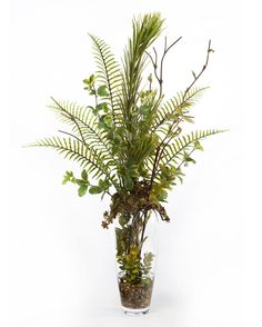 Fern & succulent vase bring in the natural beauty of the outdoors with Artificial Flower Arrangements, Artificial Succulents, Succulent Arrangements, Artificial Flowers, Indoor Plants Clean Air, Ferns, Silk Flowers, Flower Decorations, House Plants
