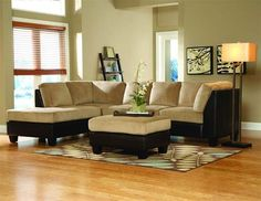 Like the paint color to go with our darker tan couches