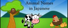 Japanese Vocabulary: 10 Animals in Japanese Learn Japanese Words, Japanese Names, Japanese Language Learning, Learning Japanese, Medium Blog, Japanese Culture, Vocabulary, Campaign, College