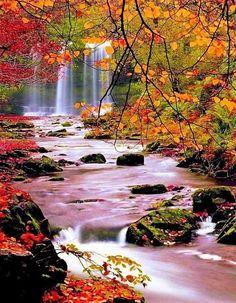 #paysage #photographie #rivière #automne