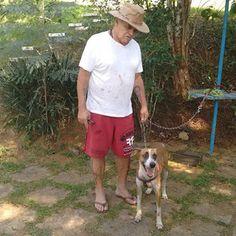 TAXI DOG MONTANHA TRANSPORTE DE ANIMAIS NO RIO DE JANEIRO: CORONEL 08/08/2015 -- Esse é o Coronel Carvalho e ...