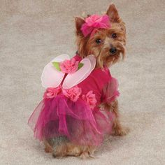 Casual Canine Flower Fairy Pet Costume