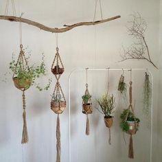 植物を吊るして飾るプラントハンガー。オシャレな雑貨店やカフェで見かけることもありますよね。なんと、身近な材料でカンタンに手作りできるのです!お部屋に飾ればグリーンたっぷりのナチュラルなインテリアの完成☆植物以外の使い方のアイデアも紹介します♪