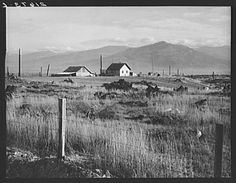 New home, new fence, newly cleared land of farmer starting up on cut-over land. FSA (Farm Security Administration) borrower. Priest River Valley, Bonner County, Idaho. General caption 49