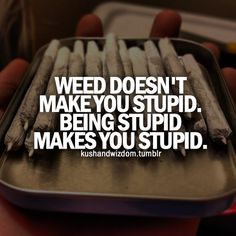 Do you agree? Weed doesn't make you stupid. Being stupid makes you stupid. Amen to that. Stoner Quotes, Weed Quotes, Weed Memes, Weed Humor, Medical Marijuana, Weed Pictures, Weed Pics, Funny Pictures, Herbs
