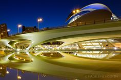 City of Arts and Sciences at Night - Home - My Stories in Pictures