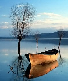 love the tranquil setting for this old row boat