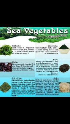 Gezondheid door de zee