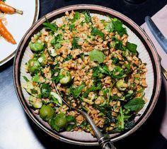 Grain Salad with Olives and Whole-Lemon Vinaigrette Recipe Farro Recipes, Olive Recipes, Salad Recipes, Healthy Recipes, Lemon Vinaigrette, Vinaigrette Recipe, Seafood Cocktail, Italian Chopped Salad, Olive Salad
