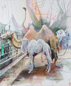 Florian Thomas - Camels (father, mother&baby)