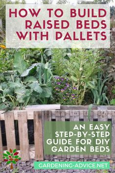 Raised Garden Beds From Used Pallets For Nearly FREE A step-by-step guide to building raised garden beds from used pallets. It is easy and nearly free!A step-by-step guide to building raised garden beds from used pallets. It is easy and nearly free! Gardening For Beginners, Gardening Tips, Gardening Supplies, Diy Garden Bed, Terrace Garden, Building Raised Garden Beds, Homestead Gardens, Olive Garden, Herbs Garden