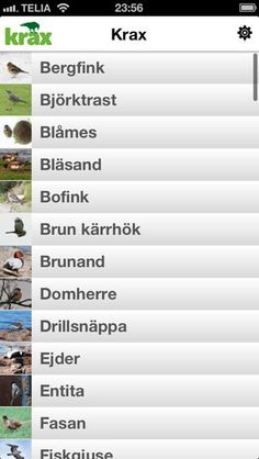 Krax är en fågelapplikation med bilder och ljud för 104 av de vanligaste svenska fåglarna. Applikationen innehåller utöver det även länkar t...