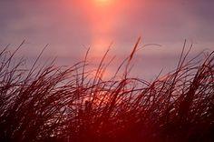 """Sunrise #1"" By Kay Bice. Original Photography, 16x20"" Matted & Wrapped Paula Estey Gallery http://www.amazon.com/dp/B01BWHVKZI/ref=cm_sw_r_pi_dp_u230wb0WGY385"