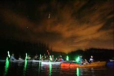 Bioluminescenct kayak tours - Merritt Island National Wildlife Refuge