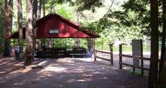 Have a picnic in this warm weather at Storrs Pond!