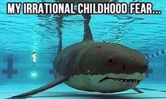 My irrational childhood fear...