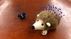 CENTO-hedgehog