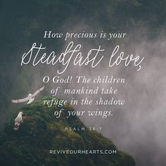 How precious is your steadfast love, O God! The children of mankind take refuge in the shadow of your wings. | Psalm 36:7