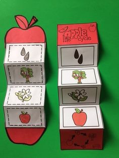 Apple Life Cycle Craft By Gwyn September 2017 // No commentsApple Life Cycle Craft Tree Life Cycle, Apple Life Cycle, Life Cycle Craft, Preschool Apple Theme, Fall Preschool, Preschool Activities, Preschool Printables, Preschool Apples, Fall Crafts