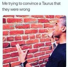 24 Taurus Memes That Will Make You Feel Seen - neijayah - Astrology party Taurus Funny, Taurus Memes, Horoscope Funny, Zodiac Funny, Taurus Quotes, Taurus Love, Taurus Woman, Zodiac Memes, Zodiac Facts