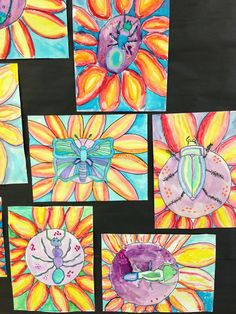 5th grade Insects.    Apex Elementary Art