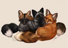 Fox Trio by Lhuin