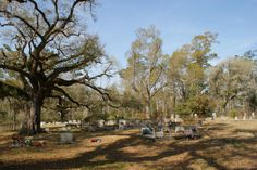 The Point Cemetery - Logtown, Mississippi