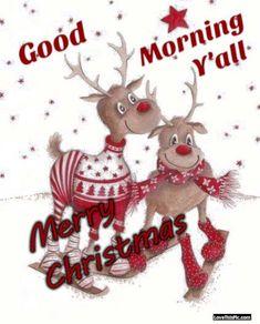 Thank you dear Cynthia. Christmas Morning Quotes, Christmas Quotes, Christmas Art, Christmas Greetings, Christmas Holidays, Christmas Phrases, Morning Sayings, Reindeer Christmas, Morning Messages