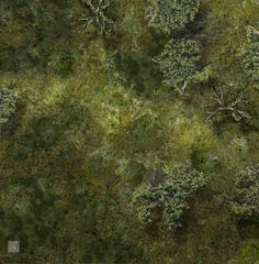 Marsh Battle Map 2 by hero339 on @DeviantArt