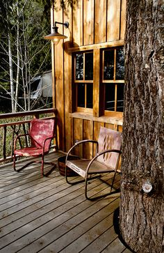 Pacific Environments, Yellow Tree House Restaurant, Warkworth (New Zealand) Treehouse Masters, Treehouse Cabins, Treehouses, Driftwood Inn, Tree House Interior, Cool Tree Houses, House Trees, Luxury Log Cabins, Cabin Porches