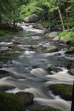 Brush Brook in New Hampshire #scenesofnewengland #soNE #scenesofNH #soNH #NewHampshire #NH #soNEliving
