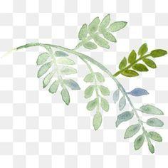 من ناحية رسم النباتات, الزهور, رسمت باليد, رسمت باليد الزهورPNG صورة