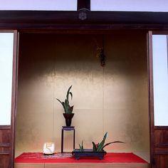 ikebana of January - Kaiko-ji Temple  かっこいいおもと。京の冬の旅という感じ #京都 - @wakokato- #webstagram