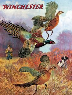 Pheasants On The Rise Painting