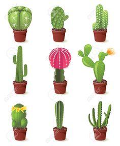 Risultati immagini per immagini cactus