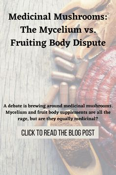 Before you invest in mushroom tinctures, drops, mushroom powders, mushroom capsules, elixirs—or the like—be aware that not all mushroom-branded supplements are created equal. Or, as many mycologists and industry experts would point out, not even close. Let this serve as a primer to help you navigate the world of mushroom supplements. Body Supplement, Brewing, Stuffed Mushrooms, Medicine, Knowledge, Health, Stuff Mushrooms, Health Care, Medical