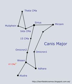 I want a dog tattoo and a constellation tattoo so this is perfect. Canis Major