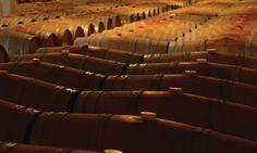 #Castelferretti: Azienda Agraria Giusti - Le Cantine #lacrima #montepulciano #sangiovese #merlot #verdicchio