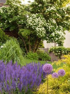 To keep this home's gardens in constant blooms and beauty, a layered planting plan includes evergreen and deciduous shrubs, perennials and bulbs. Garden Design, Hardscape, Landscape Design, Landscape Curbing, Gorgeous Gardens, Planting Plan, Landscape, Backyard, Curb Appeal