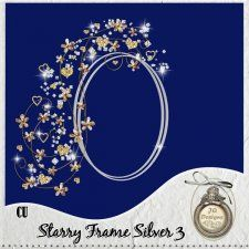 Starry Frame Silver 3